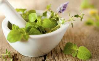Народные средства при климаксе: от приливов, при кровотечениях – лечение, как облегчить состояние, травы
