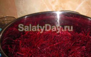 Какой свекольный салат на зиму можно приготовить легко и быстро