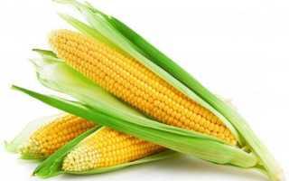 Кукуруза при панкреатите: польза и вред, особенности и спобобы употребления