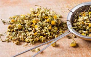 Ромашковый чай: польза напитка