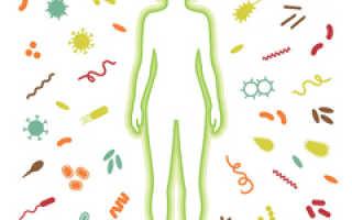 Чистка организма в домашних условиях народными средствами