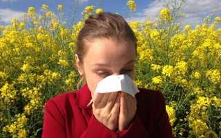 Атопическая бронхиальная астма : симптомы и лечение