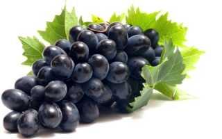 Виноград при панкреатите: польза, вред и особенности употребления