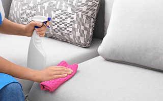 Как избавиться от запаха кошачьей мочи в квартире, на диване, ковре, в обуви