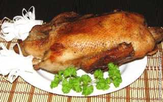 Приготовление утки в аэрогриле: как использовать помощницу на кухне