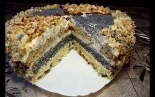Торт с маком, изюмом и орехами: необычные рецепты замечательных десертов
