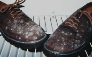 Как избавиться от запаха в обуви в домашних условиях быстро и навсегда: мочи, пота, плесени, сырости