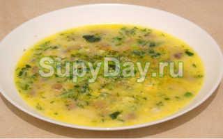 Грибной суп с плавленным сыром: варианты приготовления