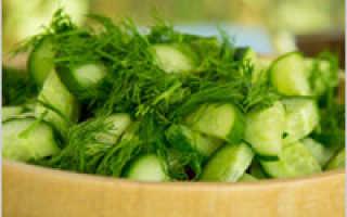 Салат из свежих огурцов: рецепт приготовления