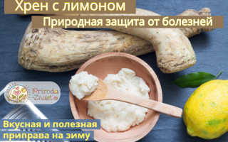 Хрен с лимоном: рецепт приготовления