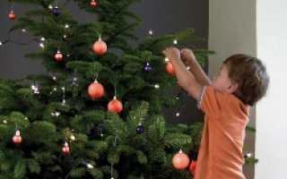 Как хранить елку новогоднюю (живую и искусственную): на балконе, в комнате