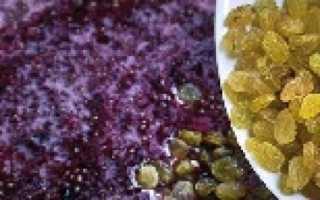Домашнее вино из варенья забродившего – простые домашние рецепты