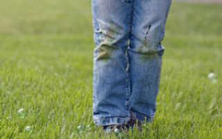 Как отстирать траву с джинсов: быстро, вручную, дома, старое или свежее пятно, химия, народные средства