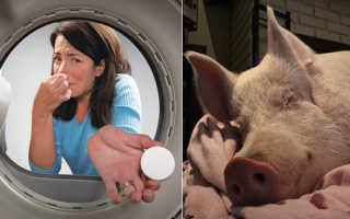 Запах в стиральной машине: как избавиться от неприятного, тухлого, затхлого, плесени