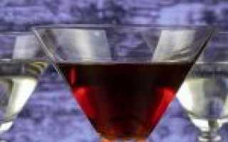 Как правильно пить мартини – приготовление коктейлей на основе напитка