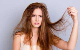 Сухие кончики волос. Как от них избавиться?