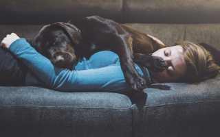 Синдром хронической усталости: как вернуть бодрость и энергию