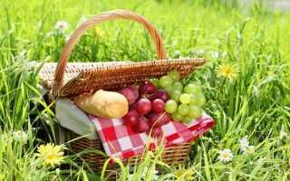 Что взять на пикник – список нужных вещей
