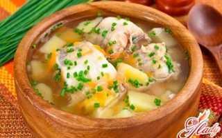 Уха: рецепт из щуки, который порадует истинного ценителя этого блюда