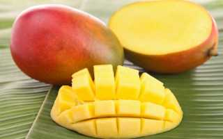Где и как хранить манго в домашних условиях: в холодильнике или тепле, чтобы дозрело, очищенный, разрезанный